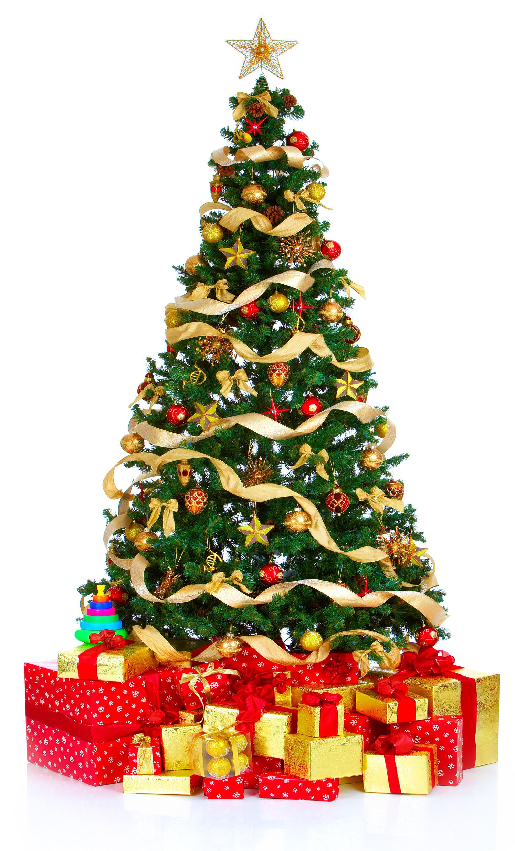 Dessins En Couleurs À Imprimer : Sapin De Noël, Numéro : 685564 serapportantà Dessin De Noel En Couleur A Imprimer