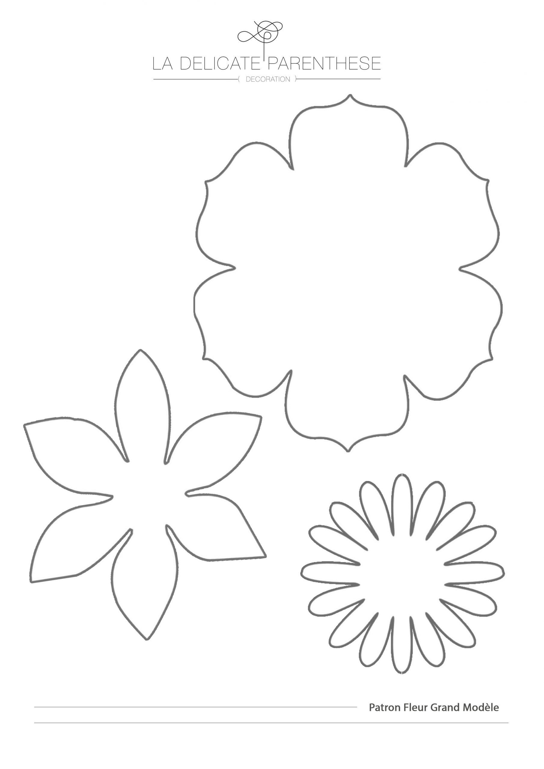 Diy ] Créez Facilement Vos Fleurs En Papier - La Délicate avec Fleurs À Découper