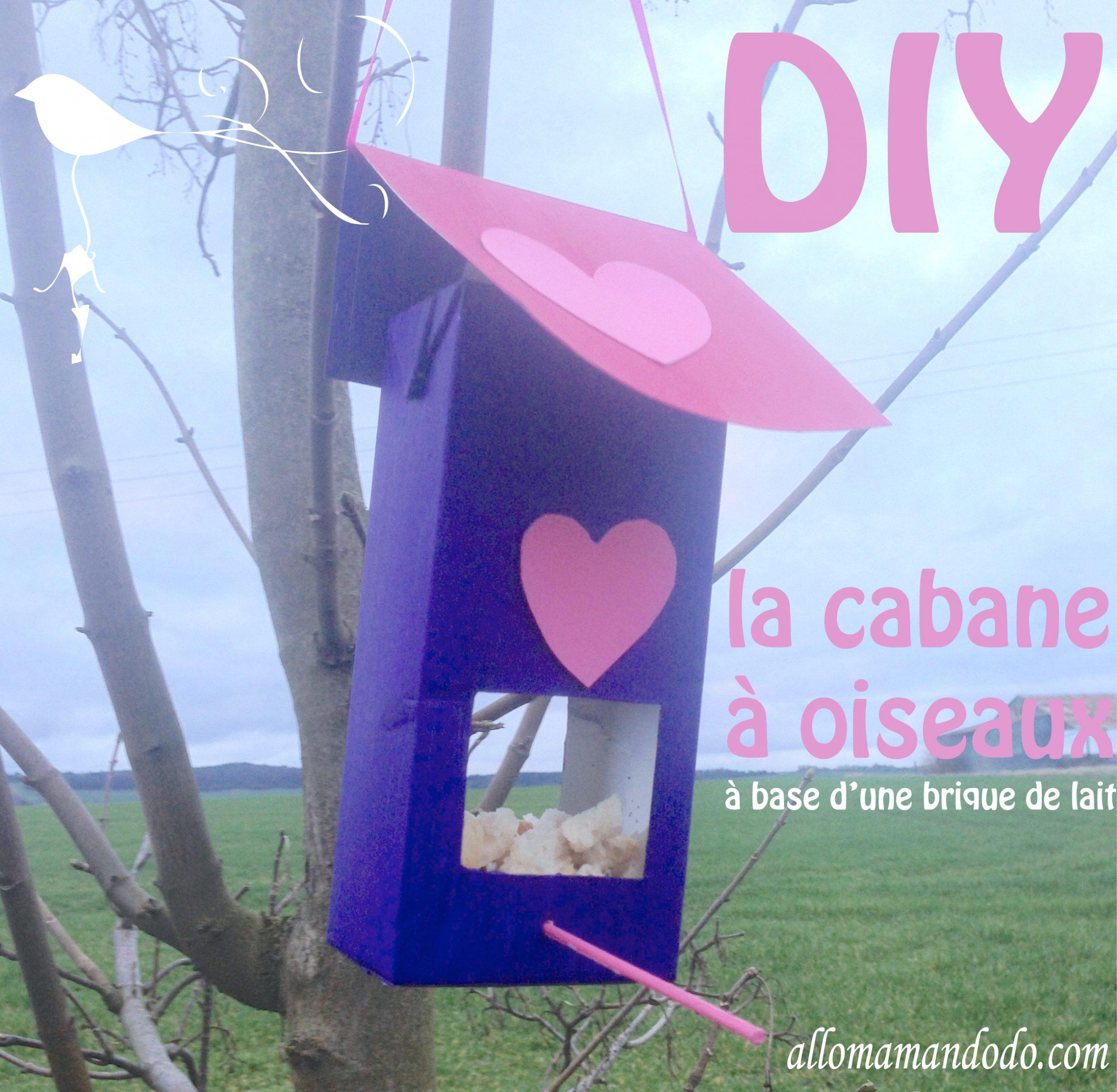 Diy: Une Cabane À Oiseau À Base De Brique De Lait - Allo avec Brique Pour Bebe