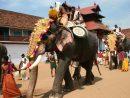 Éléphant Dans L'art - Wikiwand serapportantà Barrissement Elephant