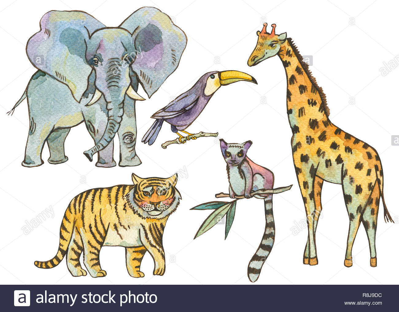 Ensemble D'animaux De La Jungle À L'aquarelle, Des Éléments à Animaux De La Jungle Maternelle