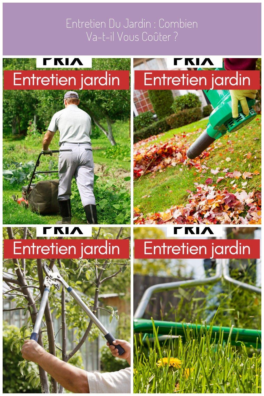 Entretien Du Jardin : Combien Va-T-Il Vous Coûter ? #pelouse avec Arbre A Taupe