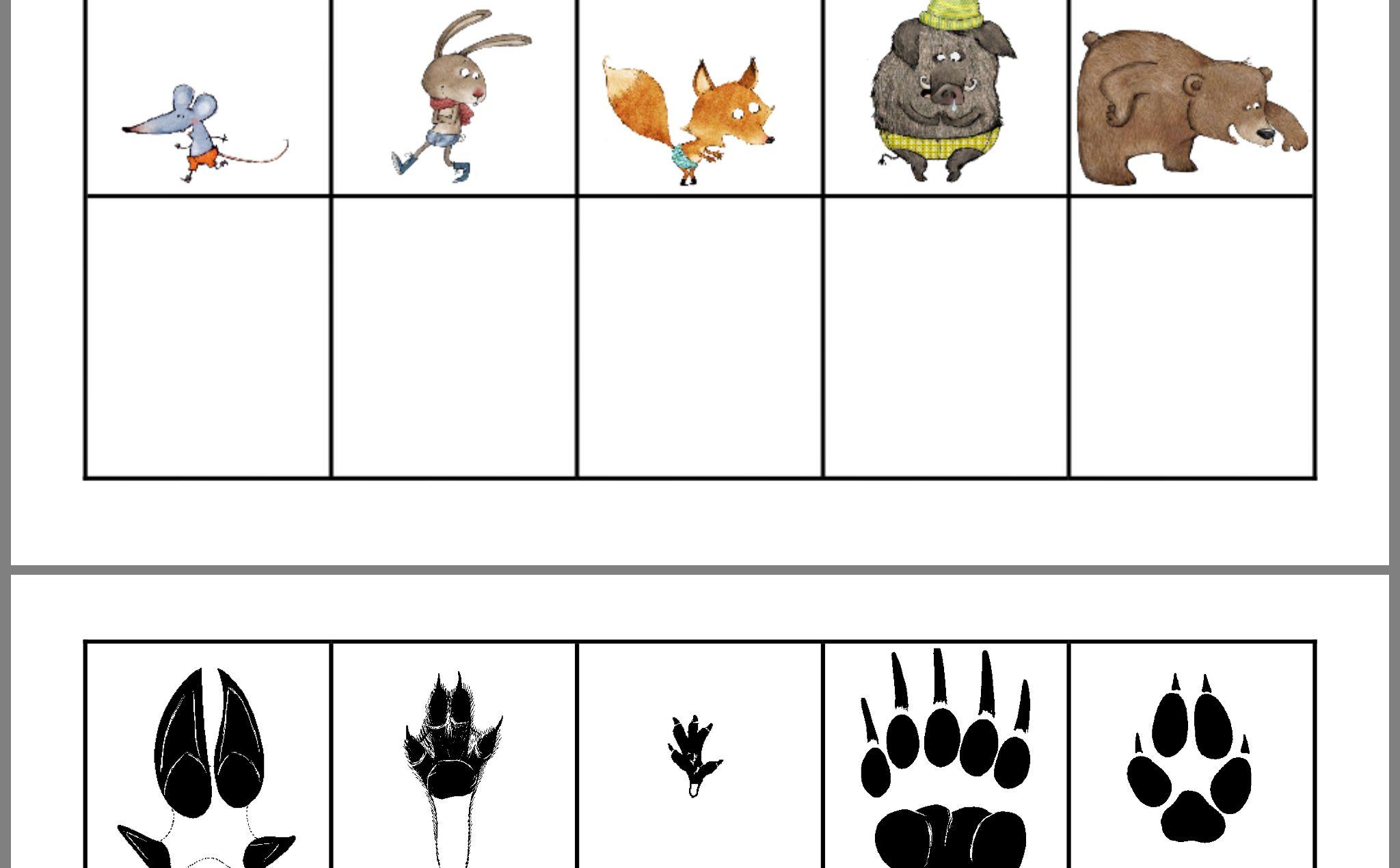 Épinglé Par Audrey Brown Sur Animaux Forêt En 2020 avec Animaux Foret Maternelle