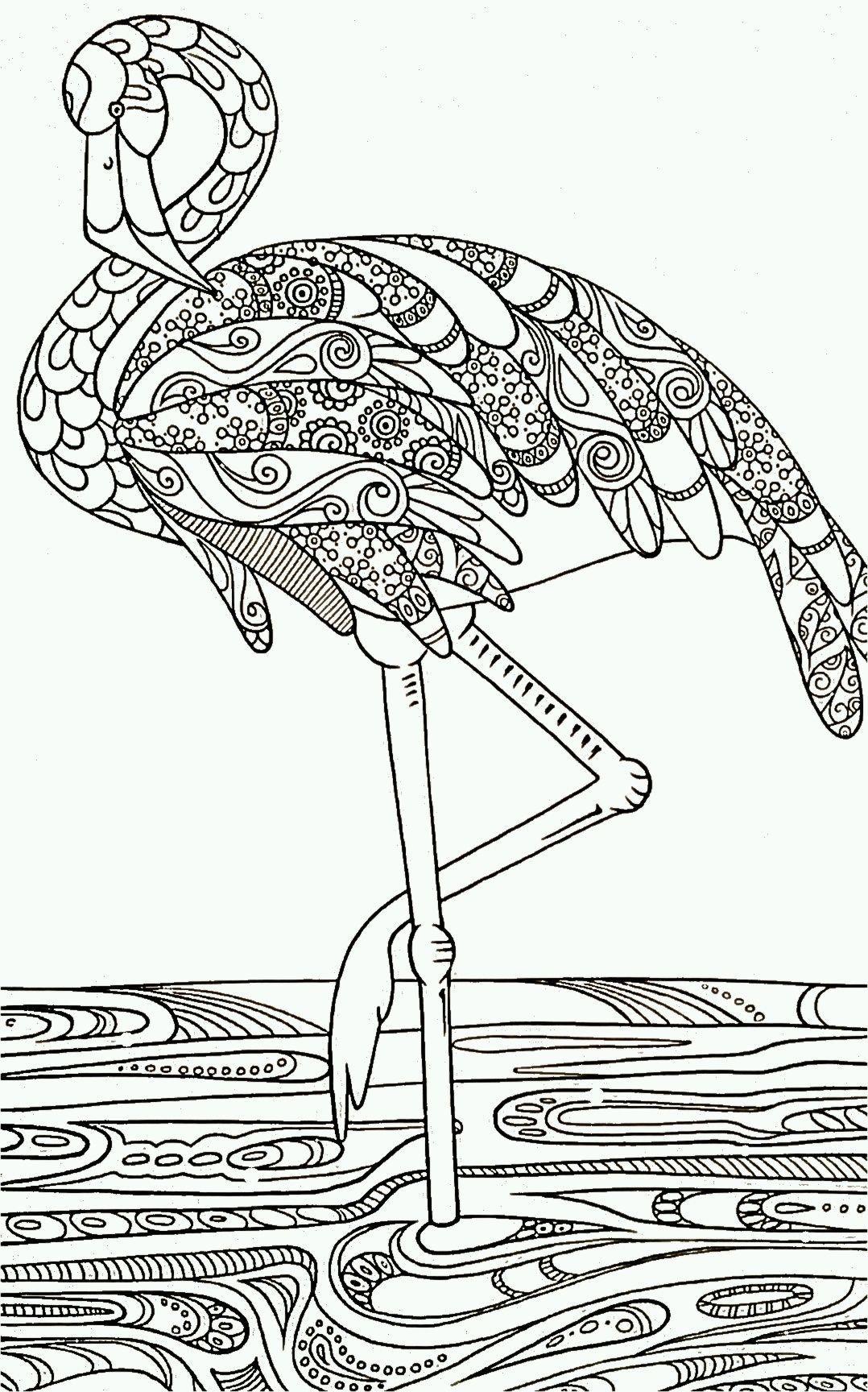 Épinglé Par Émilie Couleuriage Sur Animaux | Oiseaux À avec Jeux De Oiseau Gratuit