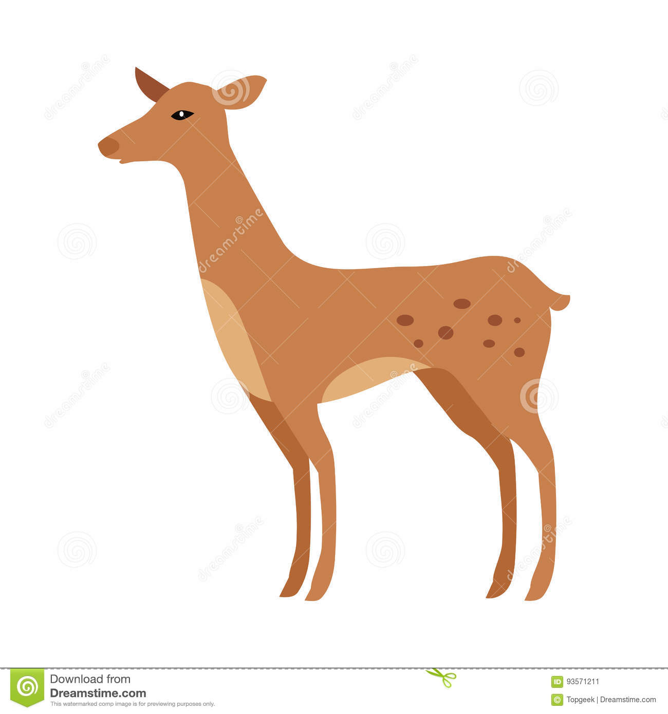 Faon D'isolement Junior Verdant Young Spotted Deer tout Faon Dessin