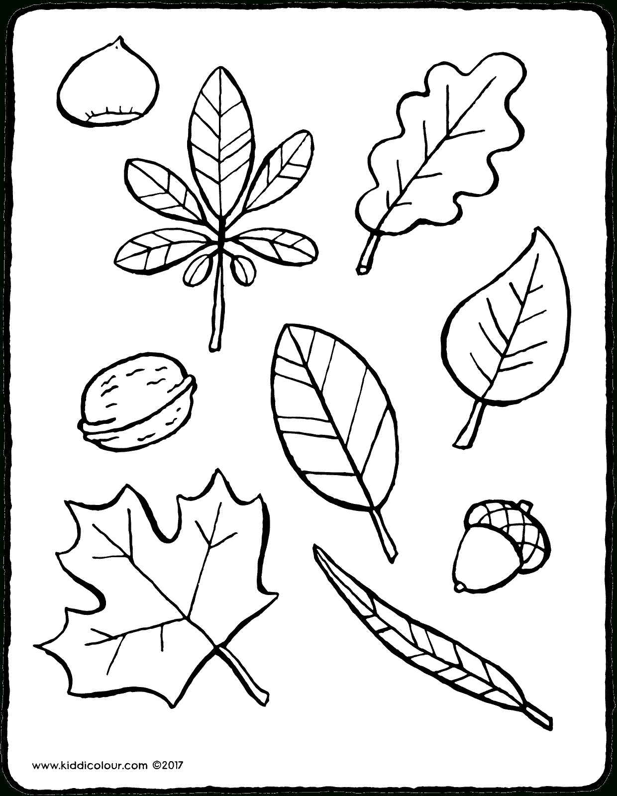 Feuilles D'automne - Kiddicoloriage destiné Feuille A Colorier