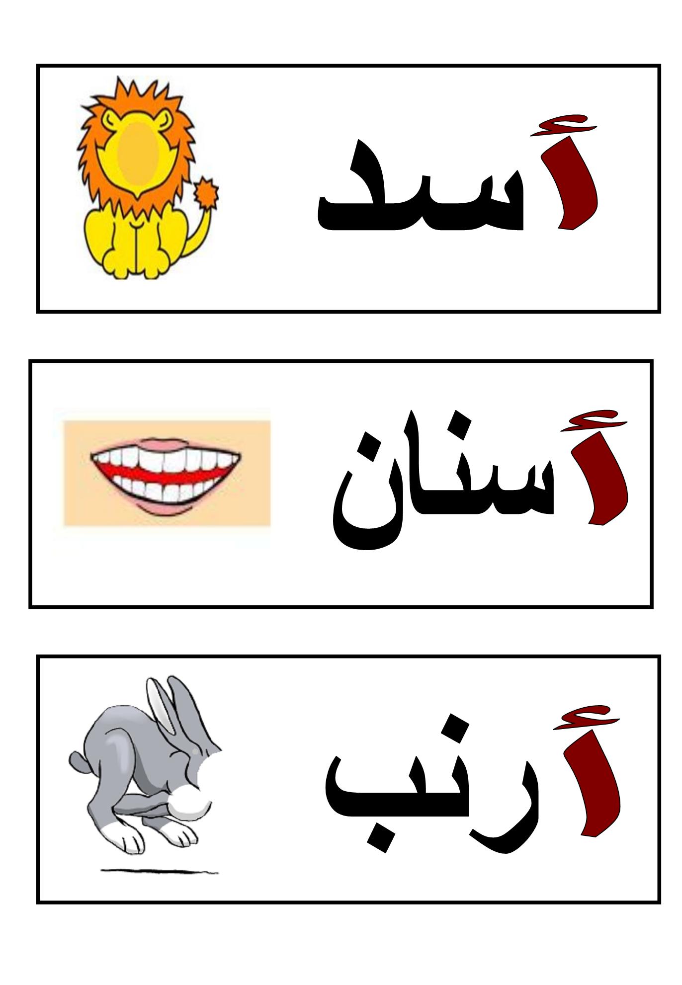 Flashcards : Mots Illustrés | Apprendre L'arabe, Alphabet intérieur Ordi Mots