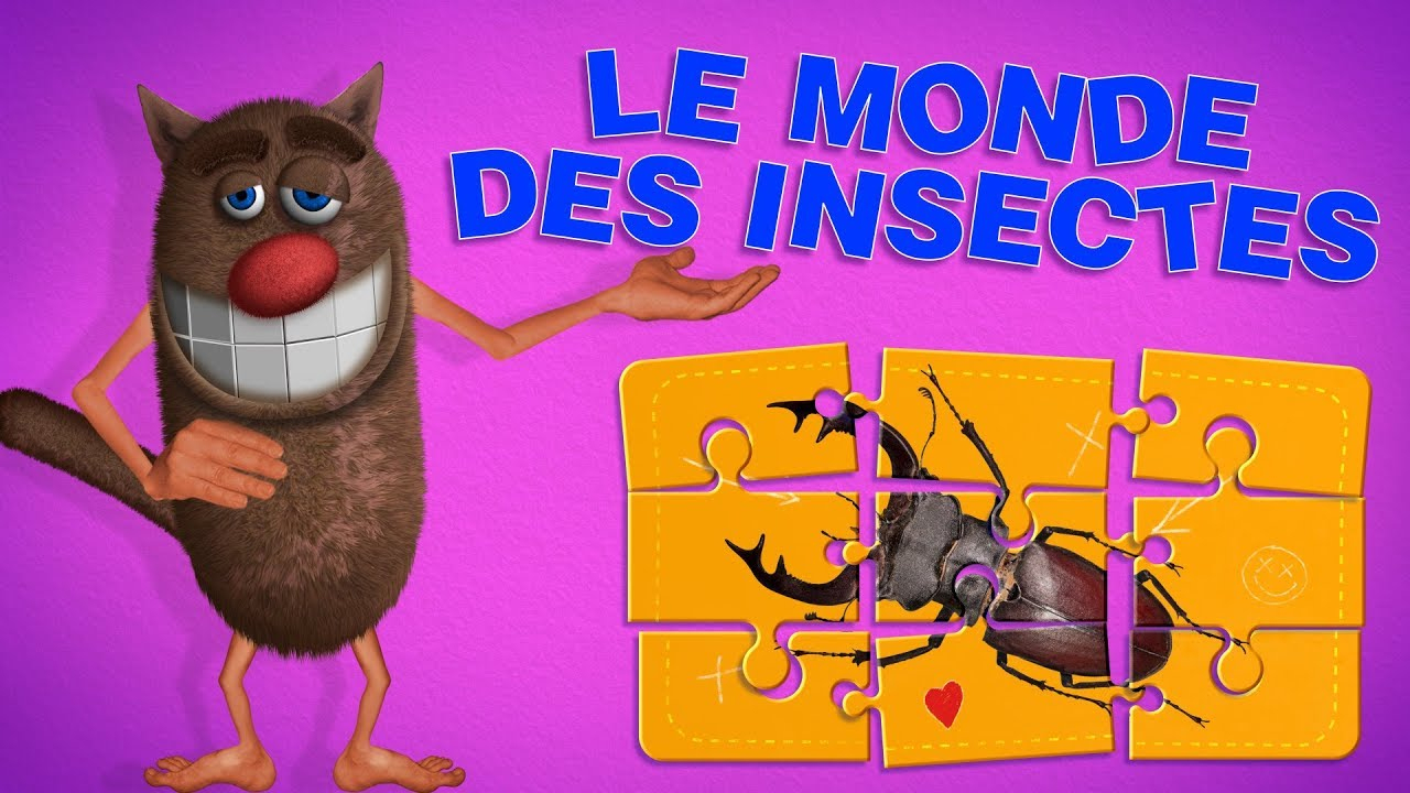 Foufou - Imagier Vidéo Pour Enfant Spécial Insectes/picture Book For Kids 4K concernant Imagier Insectes