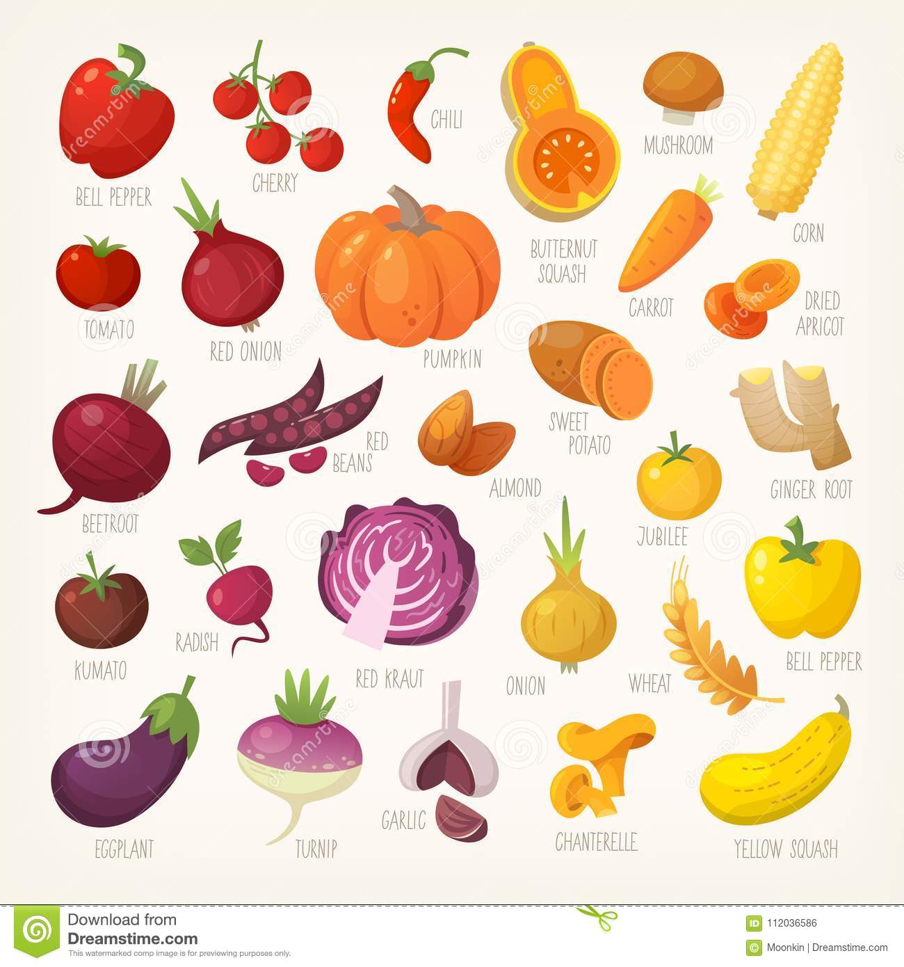 Fruits Et Légumes Colorés Avec Des Noms Illustration De à Nom De Legume