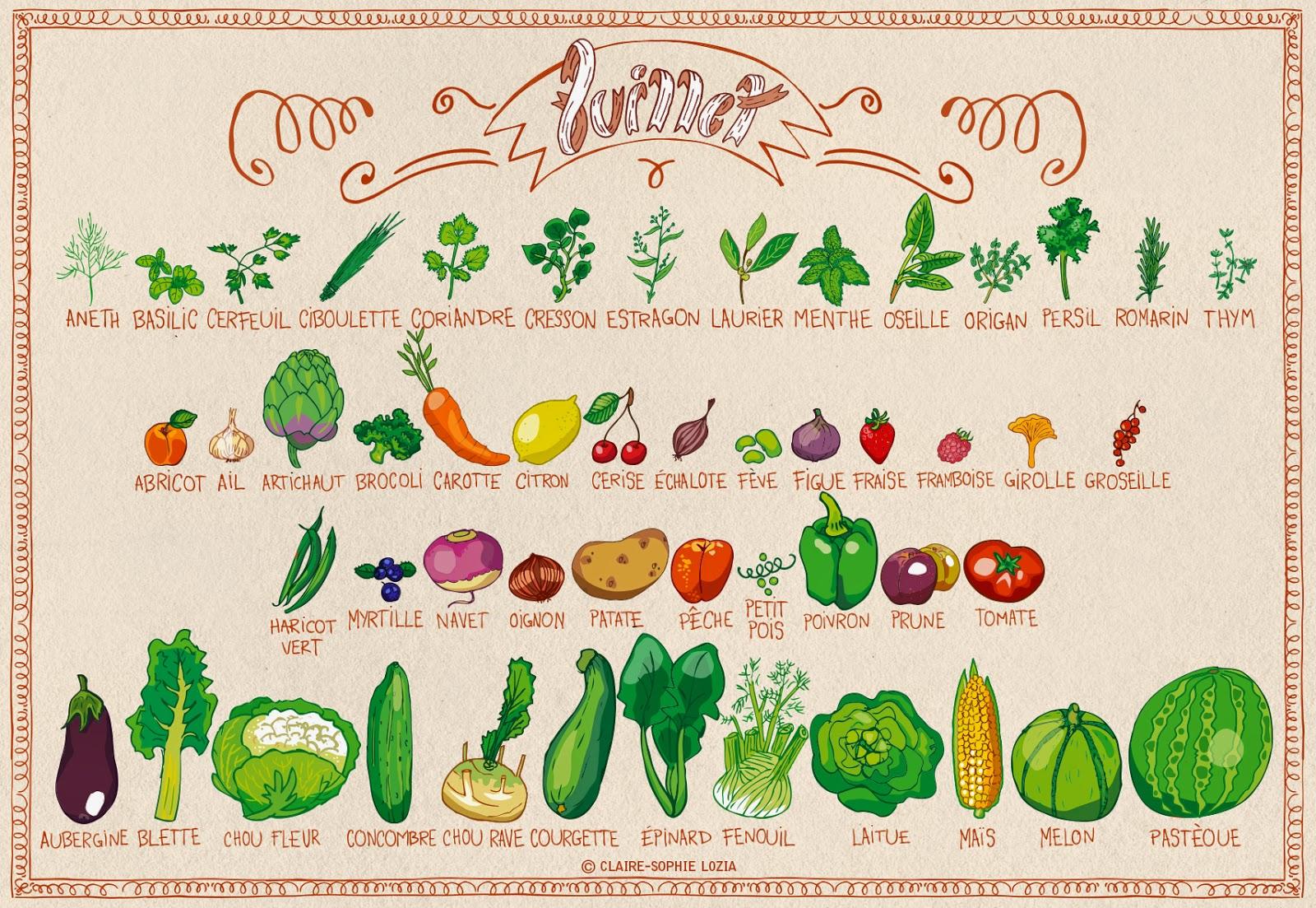 Fruits Et Légumes De Juillet destiné Nom De Legume