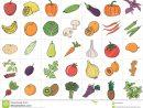Fruits Et Légumes Tirés Par La Main De Griffonnage Avec Le tout Nom Legume