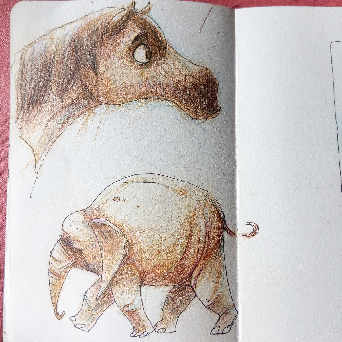 "Gaspard Talmasse On Twitter: ""des Animaux #cheval serapportantà Cheval Dessin Couleur"