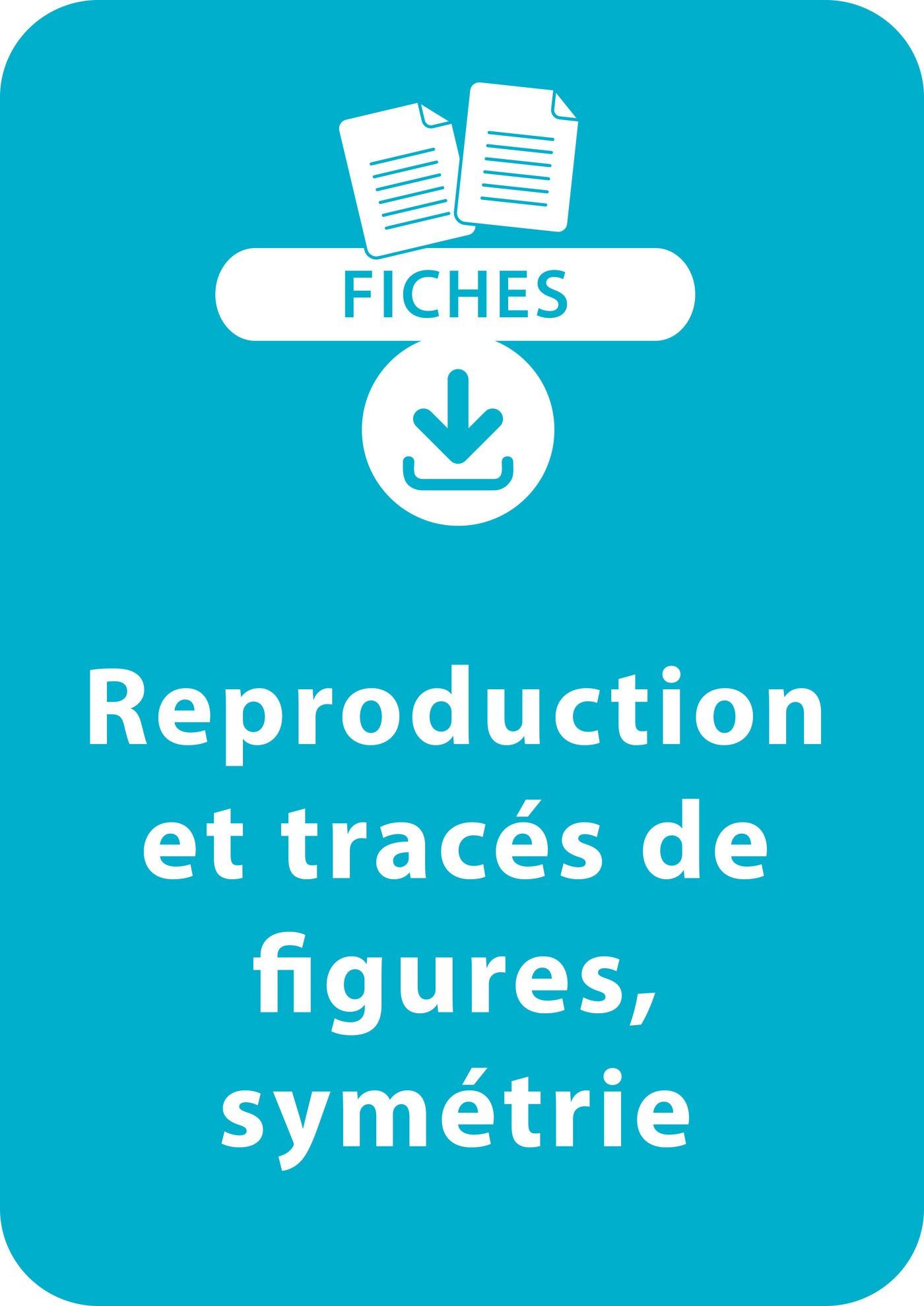 Géométrie Ce1 : Reproduction Et Tracés De Figures, Symétrie tout Reproduction De Figures Ce1