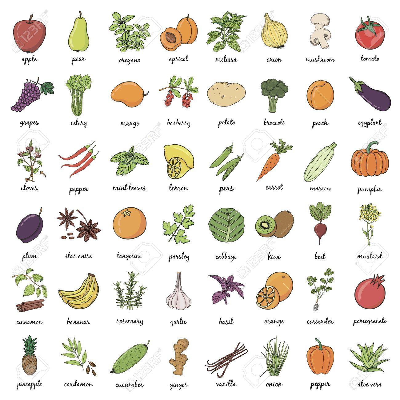 Hand Drawn Fruits Et Légumes Griffonnage Avec Le Nom. Vector Illustration destiné Nom Legume