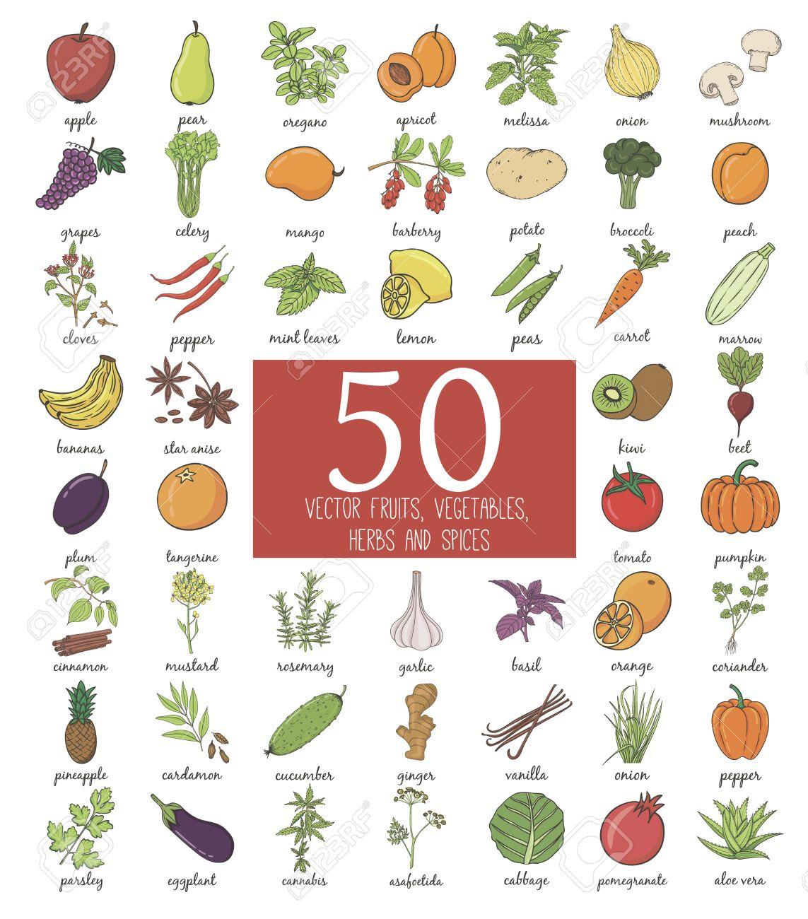 Hand Drawn Fruits Et Légumes Griffonnage Avec Le Nom. Vector Illustration pour Nom Legume