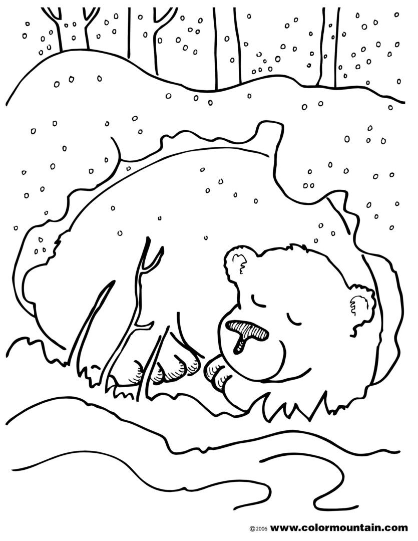 Http://colorings.co/hibernating-Animals-Coloring-Pages dedans Animaux Qui Hivernent