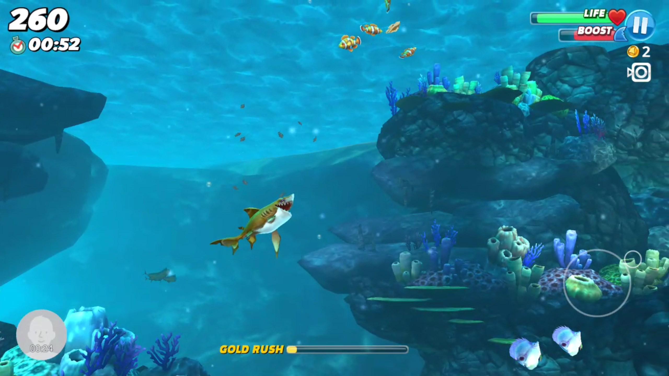 Hungry Shark World – Jeux Pour Android 2018 - Téléchargement encequiconcerne Requin Jeux Gratuit