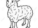 Illustration Vectorielle Du Personnage Mignon De Mouton De Bande Dessinée  Pour Enfants, Page De Coloriage avec Mouton À Colorier