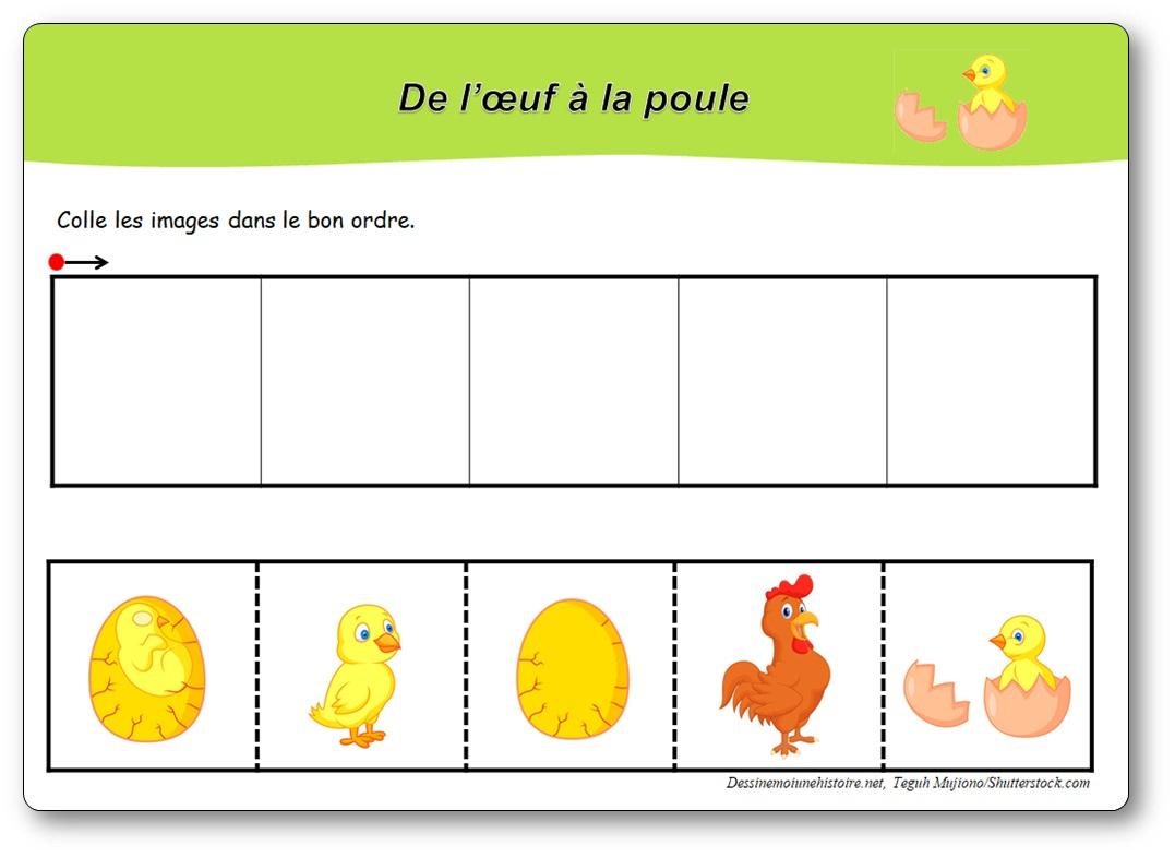 Images Séquentielles : De L'œuf À La Poule - intérieur Images Séquentielles À Imprimer