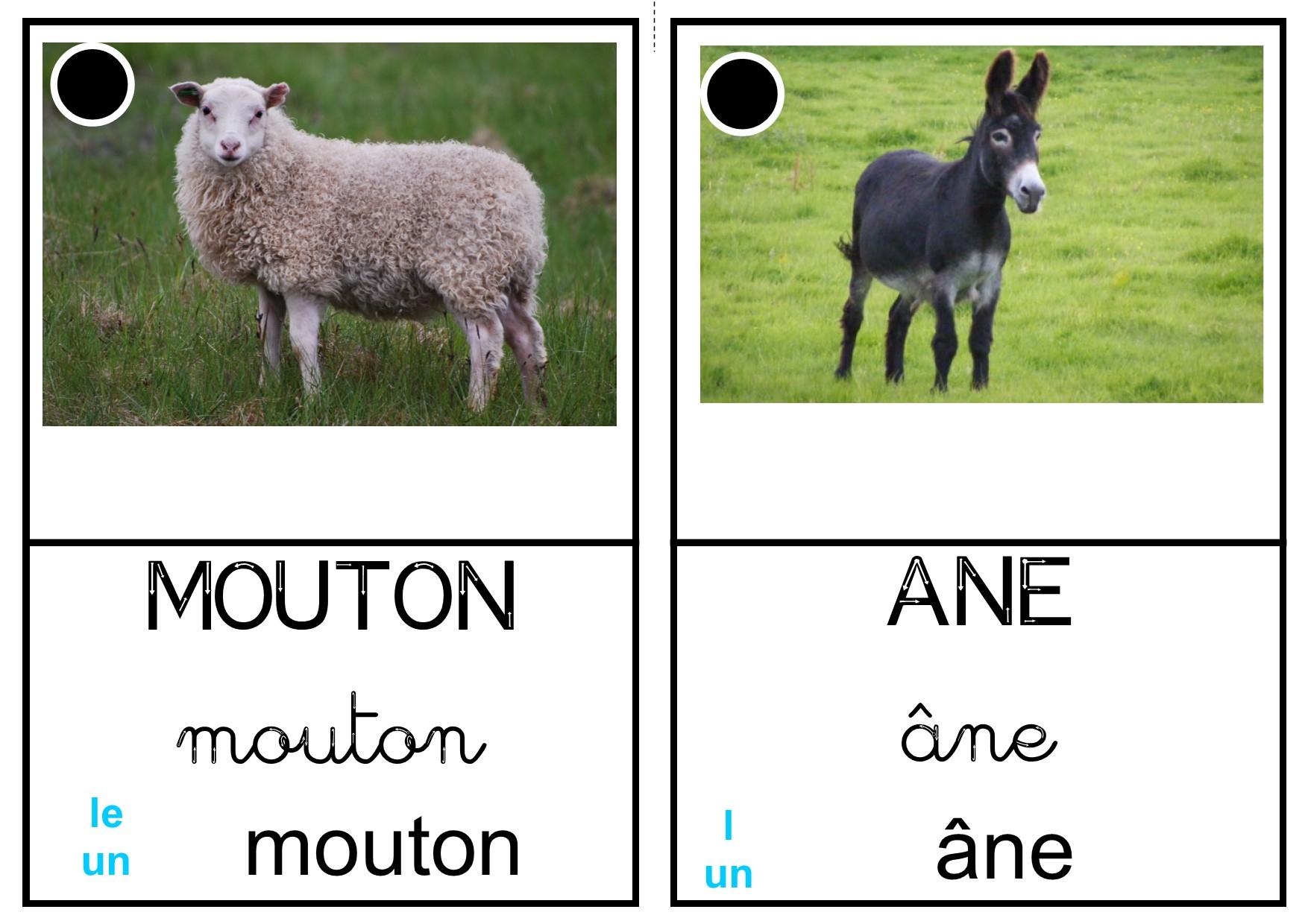 """Imagier """"animaux De La Ferme"""" - La Classe Des Petits Moyens concernant Imagier Animaux De La Ferme"""