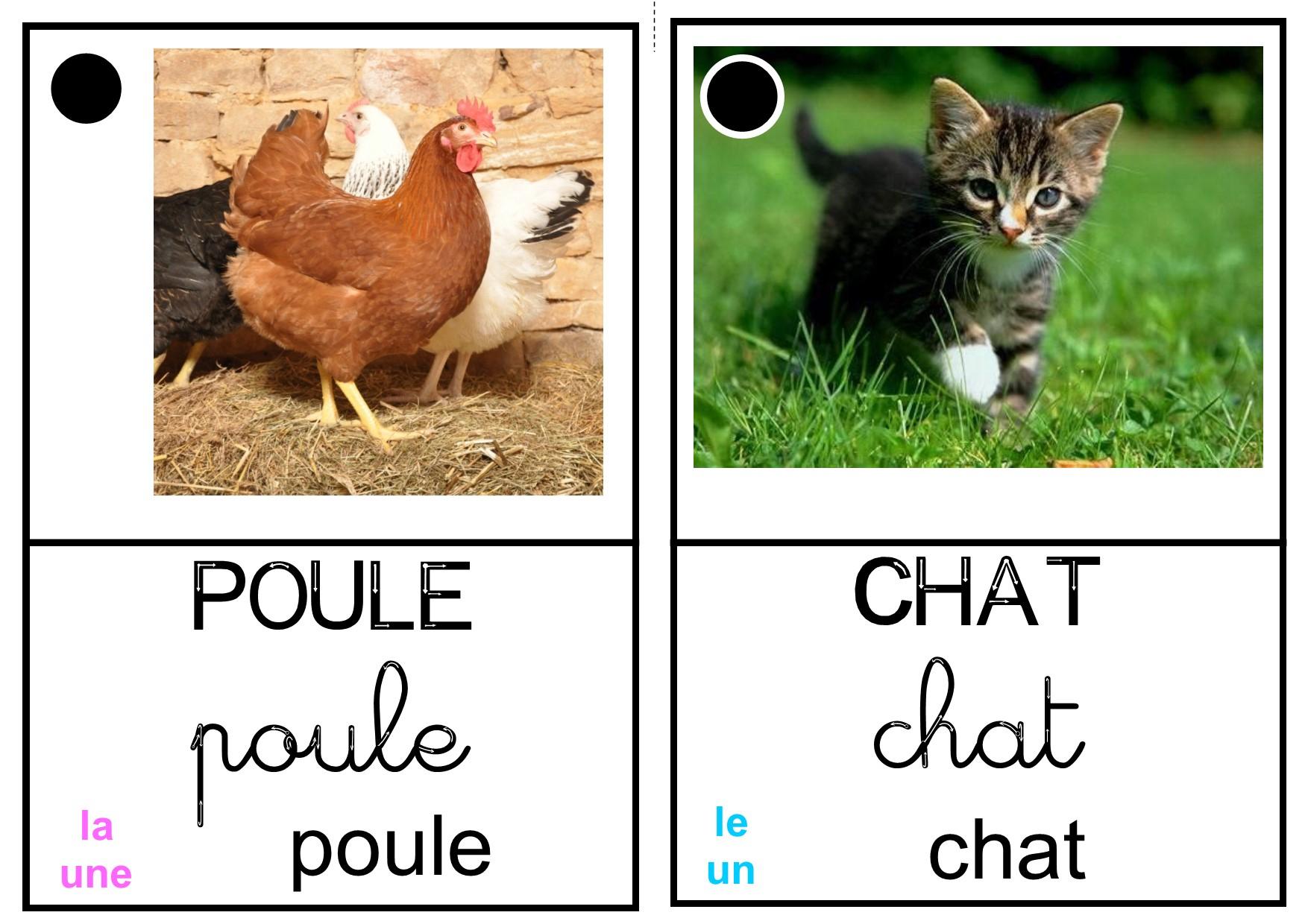 """Imagier """"animaux De La Ferme"""" - La Classe Des Petits Moyens dedans Imagier Animaux De La Ferme"""