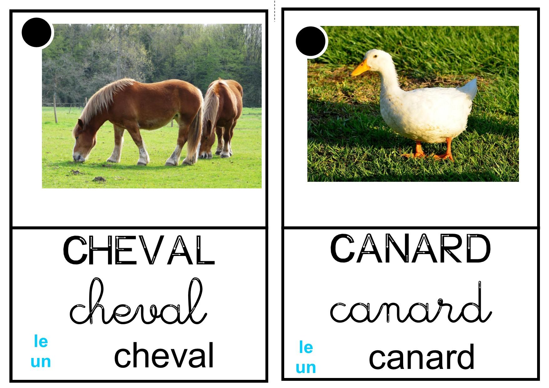 """Imagier """"animaux De La Ferme"""" - La Classe Des Petits Moyens intérieur Imagier Animaux De La Ferme"""