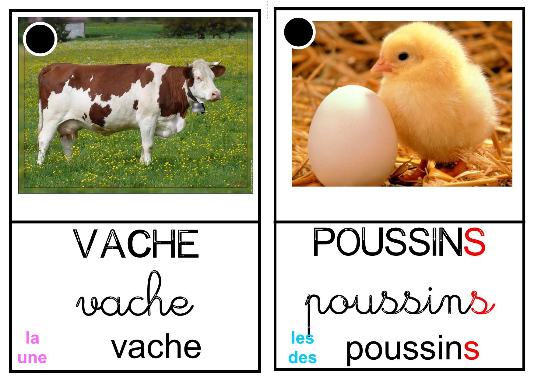 """Imagier """"animaux De La Ferme"""" - La Classe Des Petits Moyens pour Imagier Animaux De La Ferme"""
