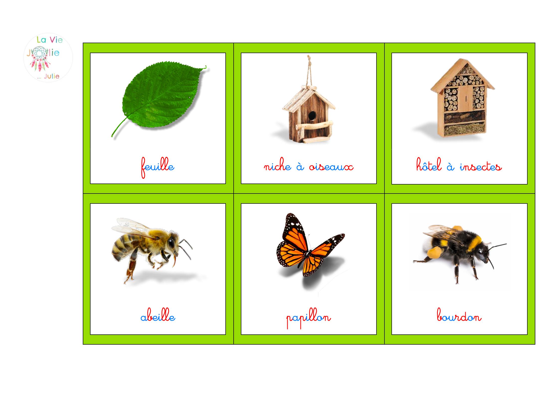 Imagier Printemps dedans Imagier Insectes
