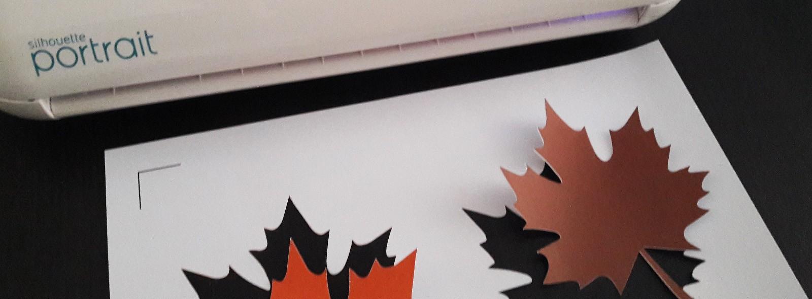 J'ai Testé La Silhouette Portrait 2 - La Tanière De Kyban avec Papier Plastifié Imprimable