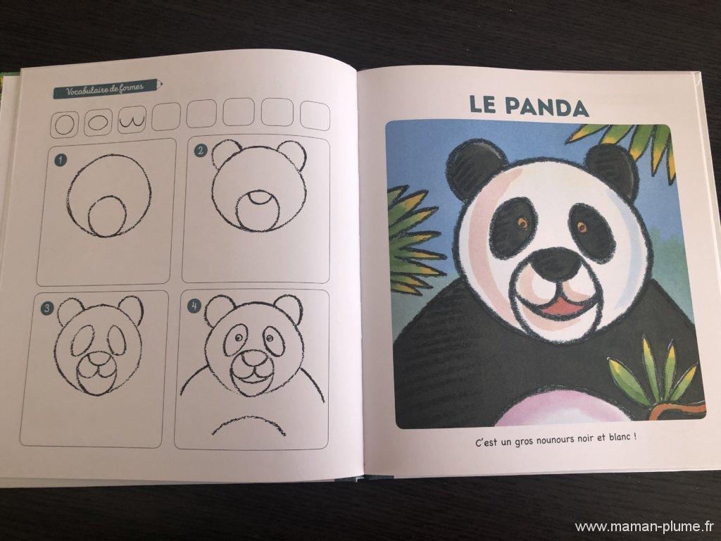J'apprends À Dessiner Les Animaux Du Monde Des Editions dedans J Apprend À Dessiner