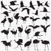 Jeu De Silhouettes De Grues, Belle, Gros, Oiseau Png Et dedans Jeux De Oiseau Gratuit