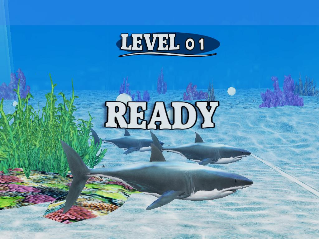 Jeu Gratuit] Fish Race: Course Avec Un Requin Ou Avec Un à Requin Jeux Gratuit