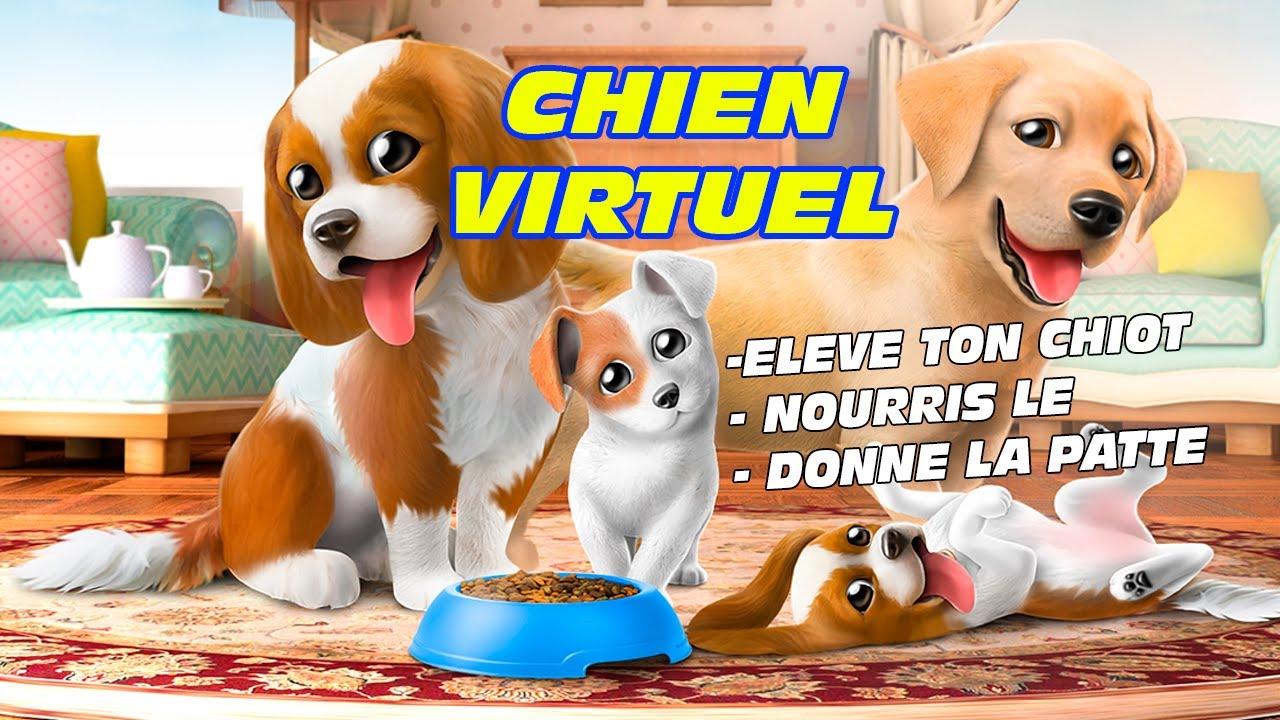 Jeux Chiot Gratuit : Adopte Un Bebe Labrador ! dedans Jeux De Bébé Virtuel