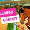 Jeux De Cheval D'obstacle Qui Saute Au Galop destiné Jeu De Fille Gratuit En Ligne Et En Francais