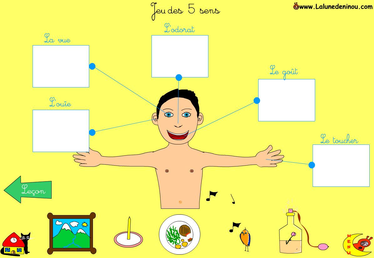 Jeux Des 5 Sens - Jeux Pour Enfants Sur Lalunedeninou dedans Jeu Des Cinq Sens
