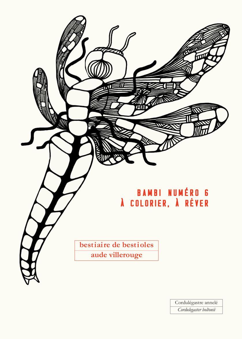 La Dessinatrice Aude Villerouge tout Imagier Insectes