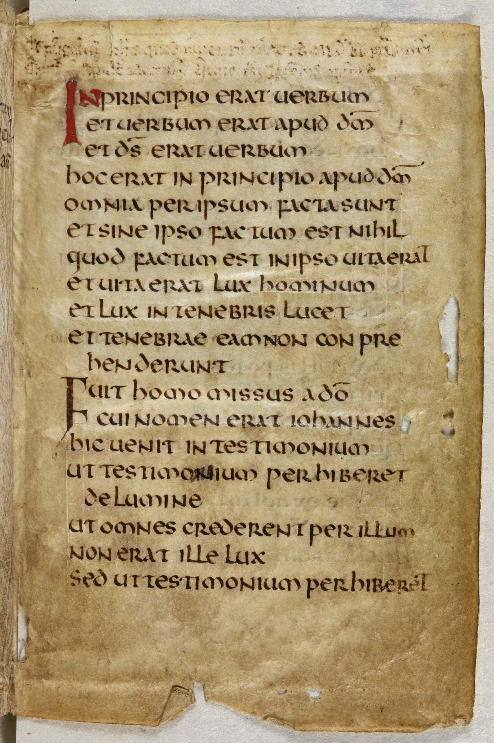 Latin Insular | Vhmml School tout Majuscule Script