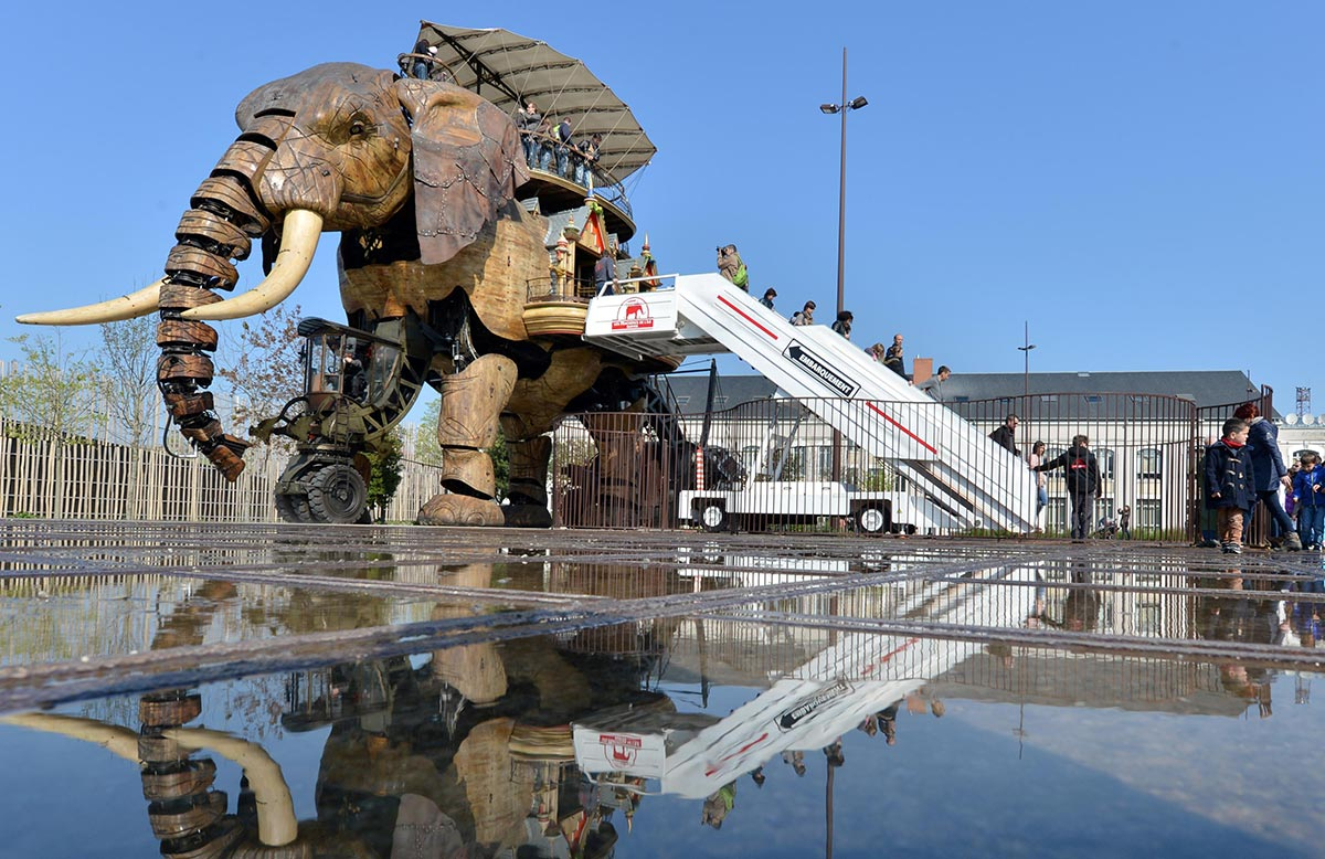 Le Grand Éléphant - Les Machines De L'île encequiconcerne Barrissement Elephant