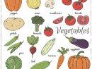 Légumes Tirés Par La Main Avec Le Nom Illustration Stock encequiconcerne Nom Legume