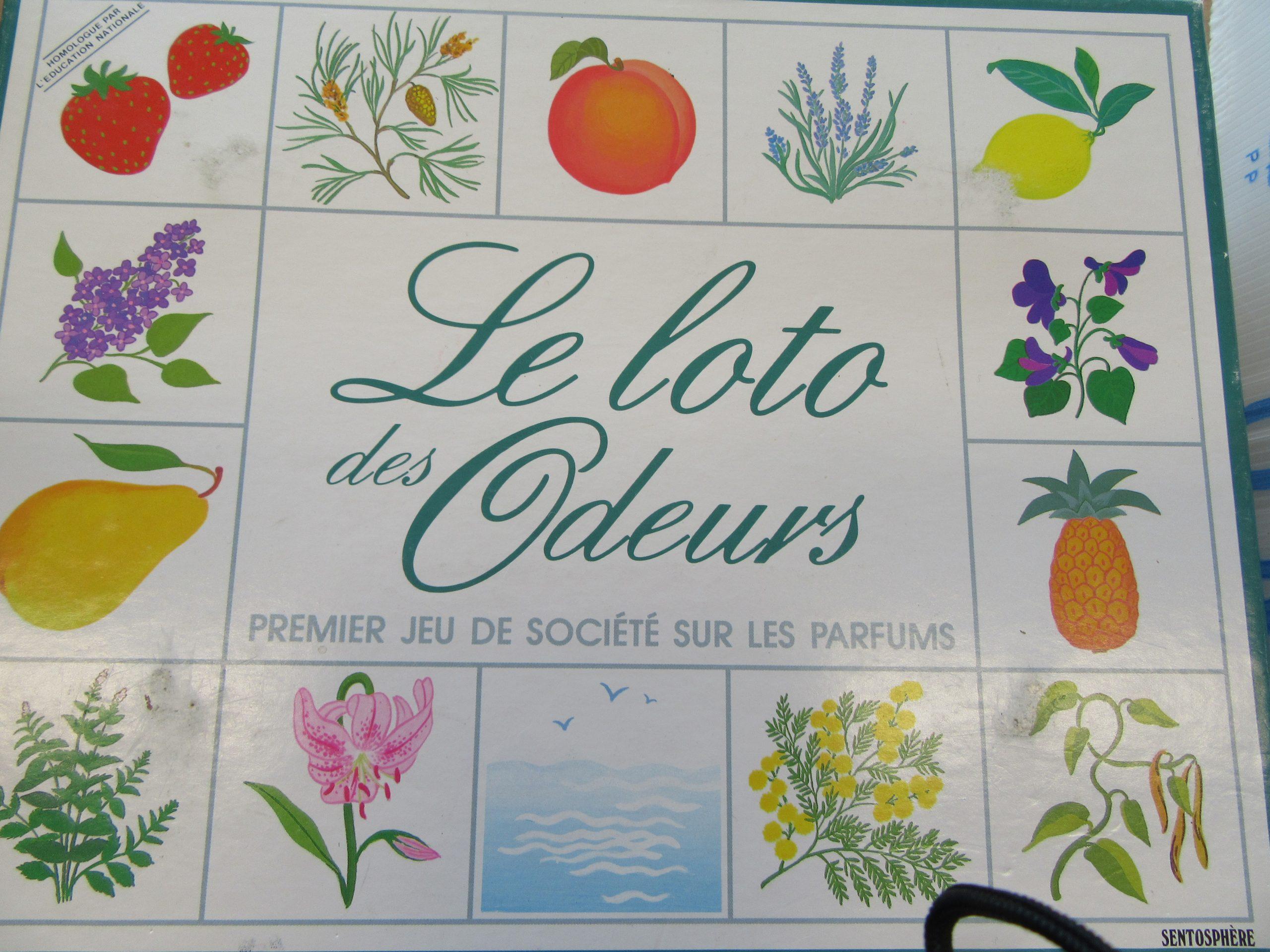 Les 5 Sens | Ecole Primaire De Saint-Girod pour Jeu Des Cinq Sens