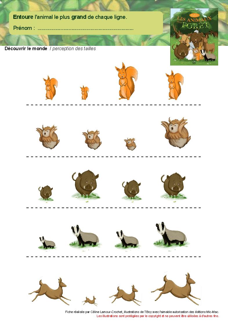 Les Animaux De La Forêt serapportantà Animaux Foret Maternelle