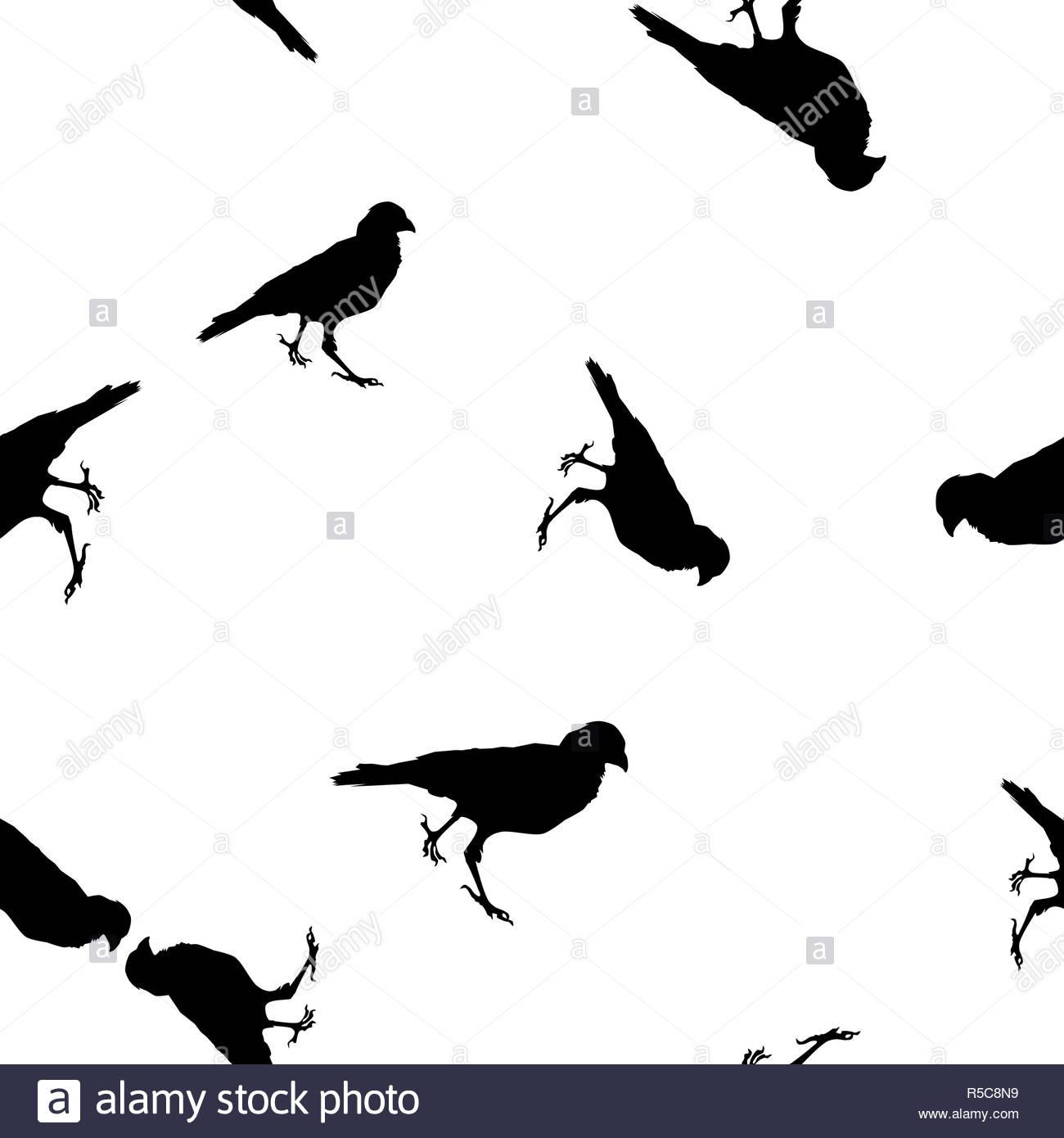 Les Animaux Sauvages Sans Les Corneilles Modèle Silhouette encequiconcerne Silhouette D Animaux À Imprimer