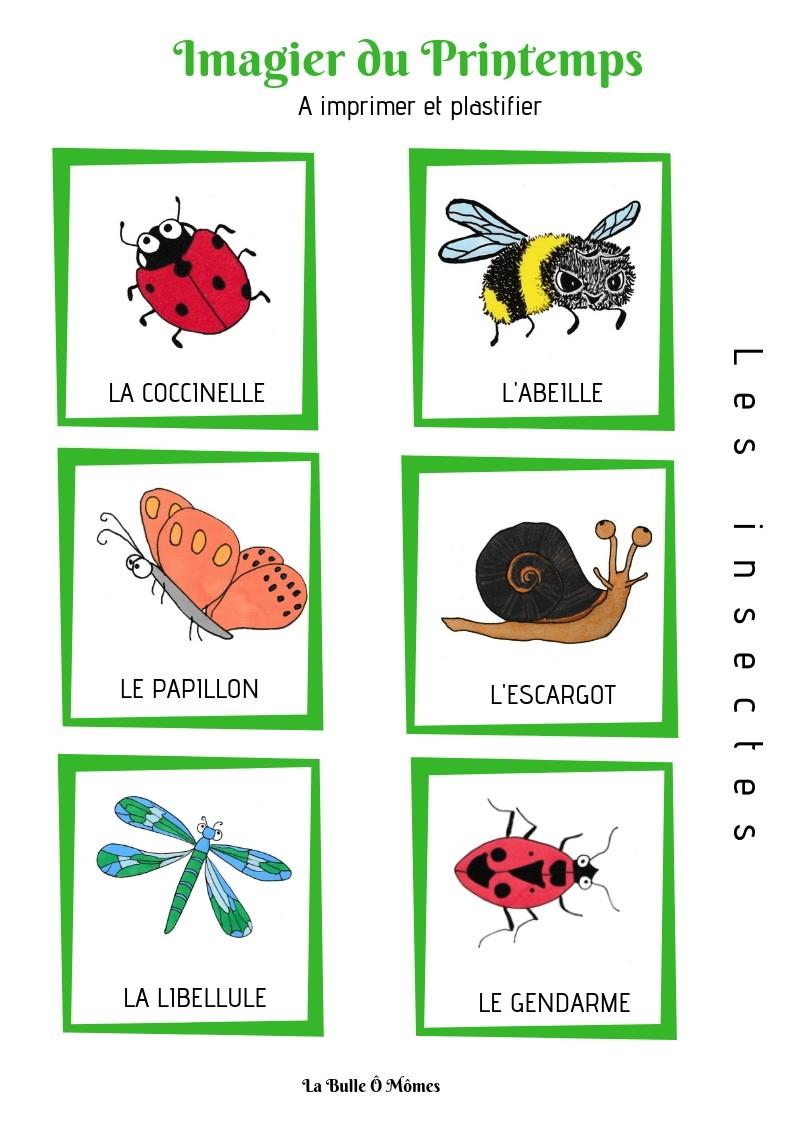 L'imagier Du Printemps concernant Imagier Insectes