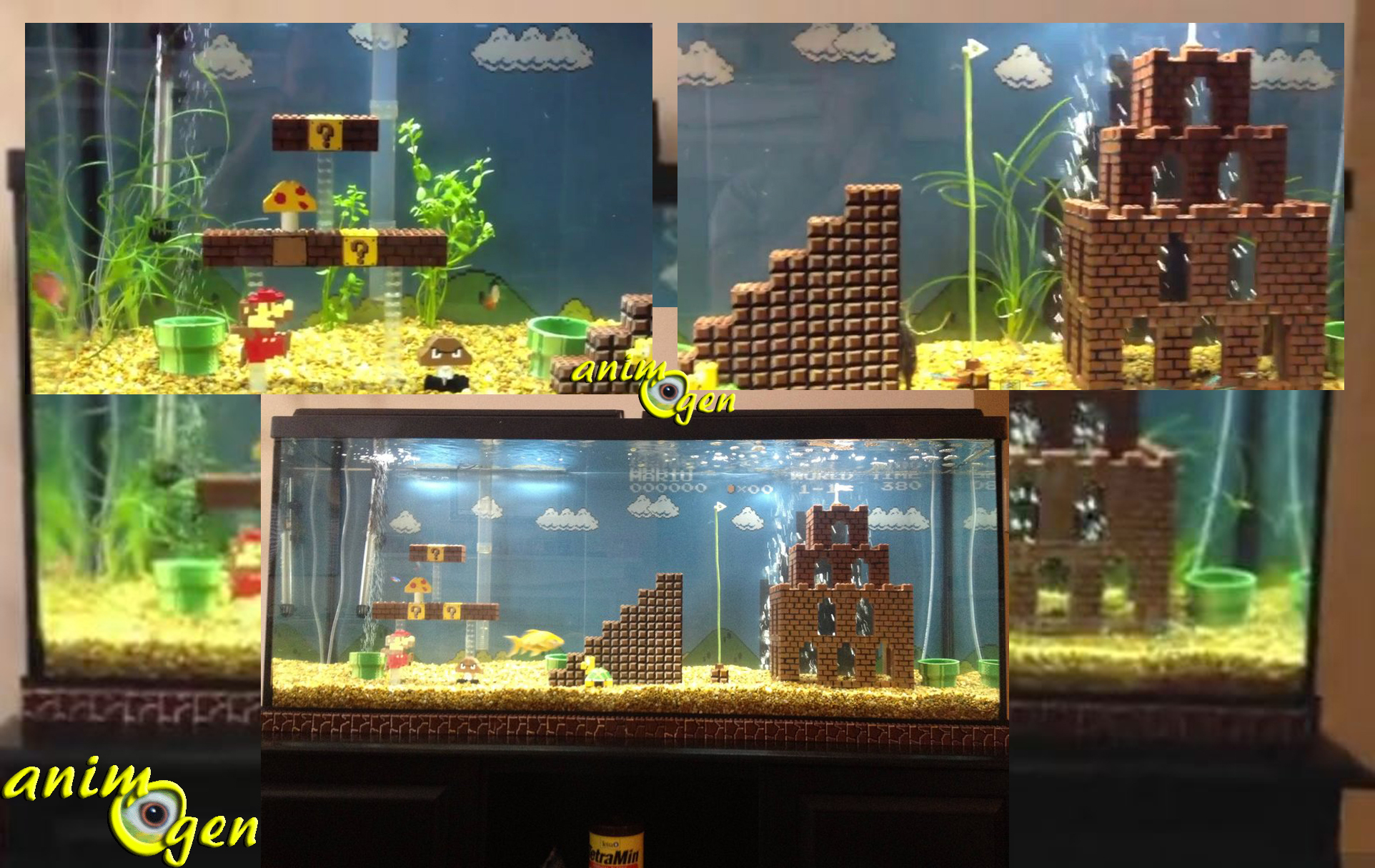 L'univers De Mario Bros Dans Un Aquarium, Pour Les Fans De destiné Jeux Du Poisson