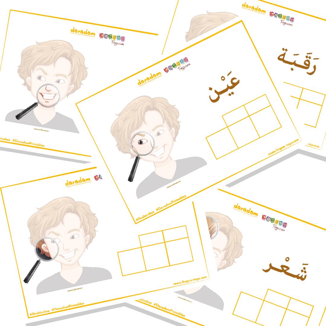 Mes Premiers Mots En Arabe : Les Parties Du Visage - Daradam destiné Apprendre Les Parties Du Visage