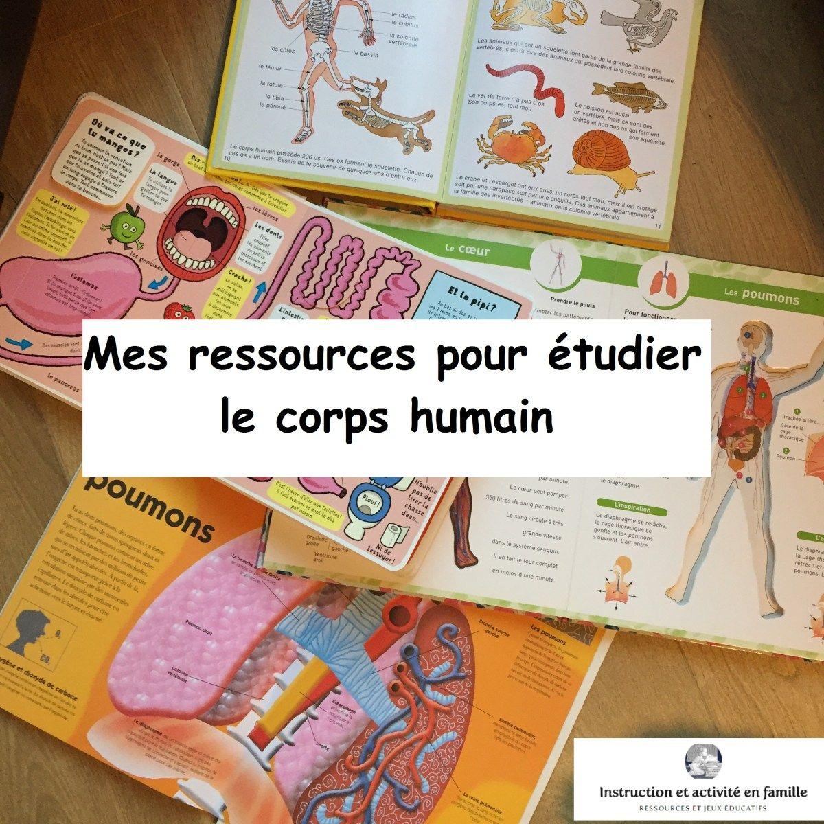 Mes Ressources Pour Étudier Le Corps Humain | Activités Du destiné Activité Corps Humain