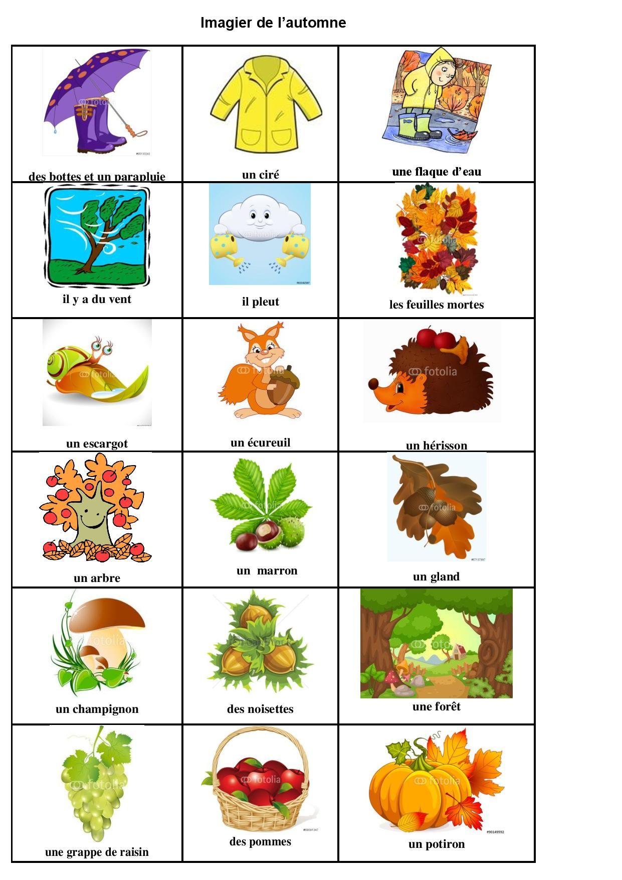 Mon Imagier De L'automne | Imagier, École Maternelle destiné Imagier Ecole