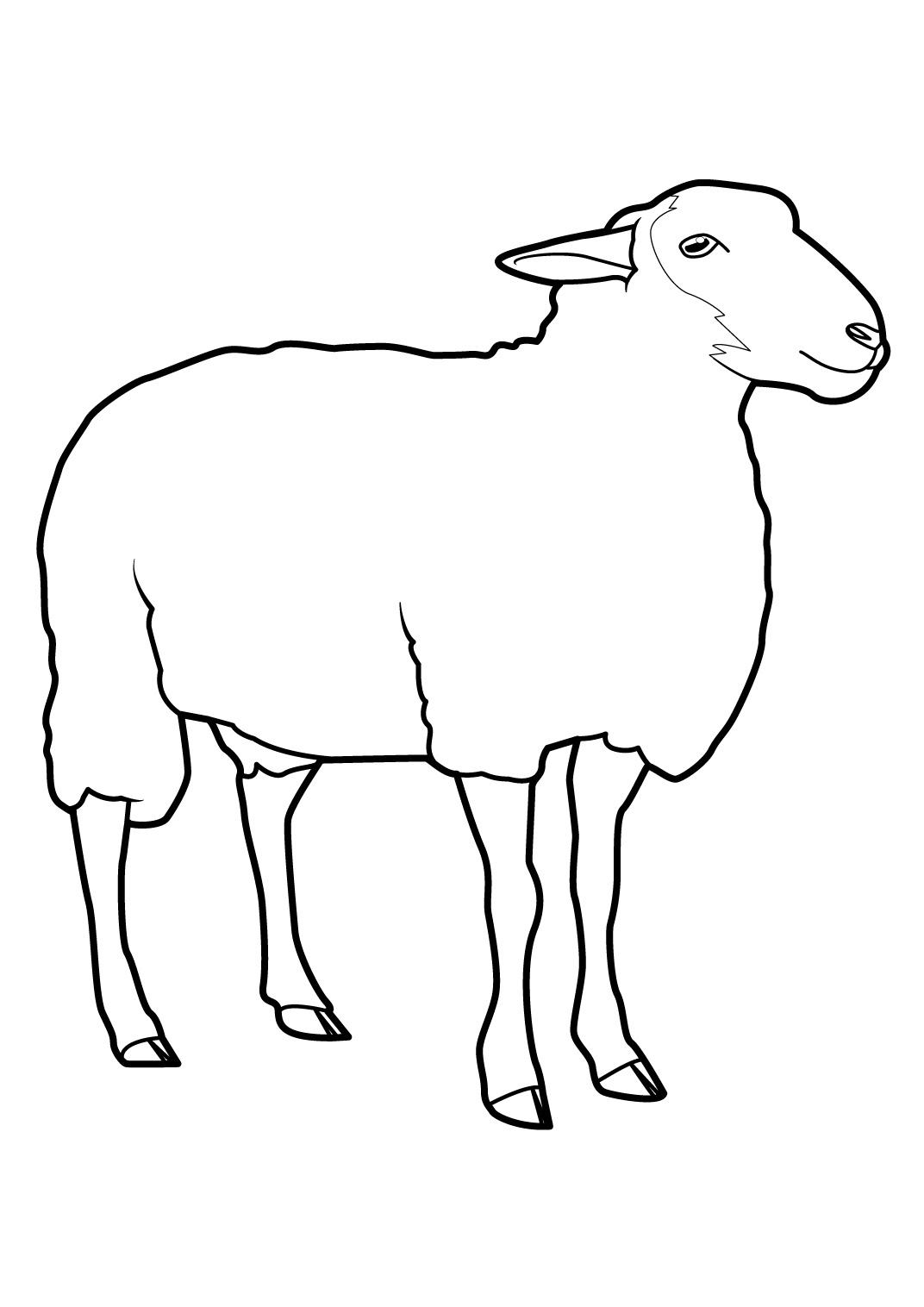 Mouton #2 (Animaux) – Coloriages À Imprimer tout Mouton À Colorier