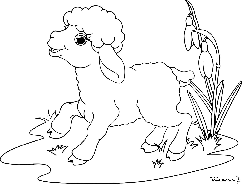 Mouton #29 (Animaux) – Coloriages À Imprimer concernant Mouton À Colorier