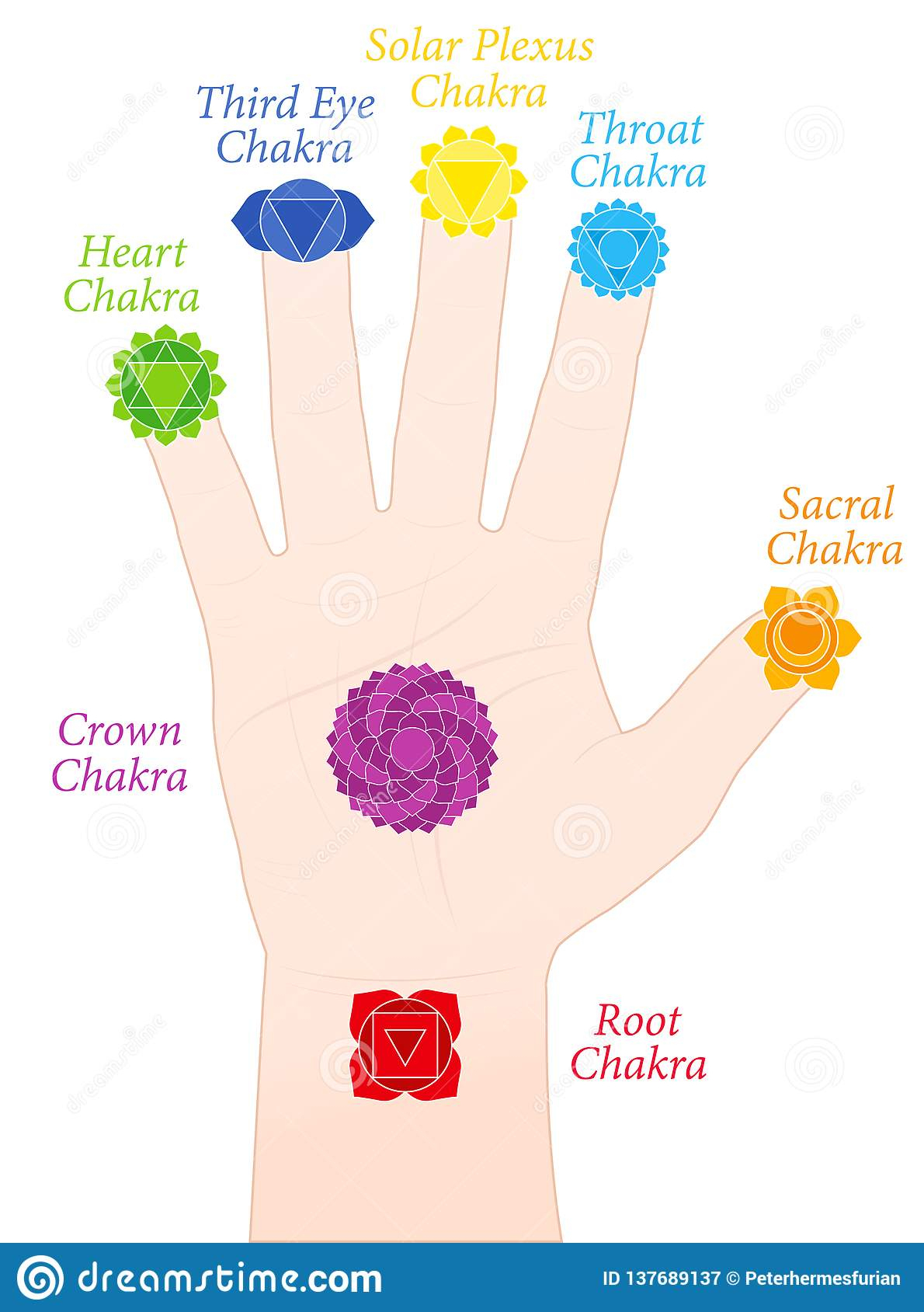 Noms De Symboles De Doigts De Main De Chakras De Paume avec Le Nom Des Doigts De La Main
